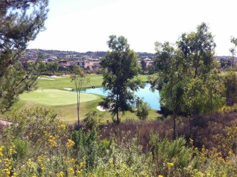 Del Mar Country Club Real Estate